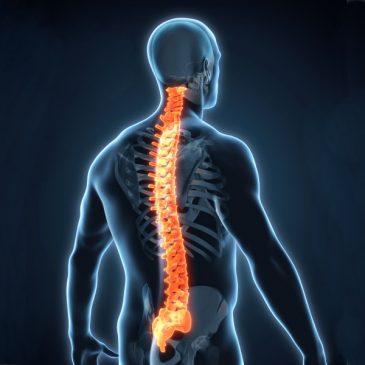 Matratzen gegen Rückenschmerzen